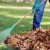 60% Off Fall Landscaping Package