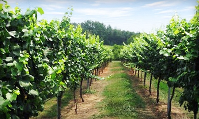 Travels In Wine Tours - Hendersonville: $75 for Fall Wine Tour from Travels in Wine Tours in Hendersonville ($150 Value)