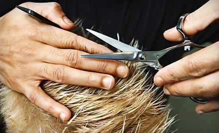 $60 Groupon to Styles Hair Studio - Styles Hair Studio in Okemos