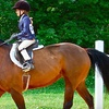 Up to 55% Off Horseback-Riding Lesson in Quinton