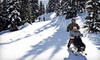 Sno-White Drive-In - Grousewoods: $99 for a Sno-limo Tour for Two on Grouse Mountain at Sno-limo Mountain Ecotouring in North Vancouver ($198 Value)