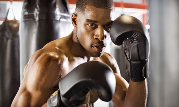 Bad Boy Boxing Gym - Bad Boy Boxing Gym: $149 for a Six-Month Membership to Bad Boy Boxing Gym ($350 Value)