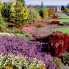 $10 for Admission to The Oregon Garden