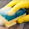 Up to 60% Off Housecleaning from Green MaidWorks