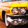 83% Off Auto Detailing in Scarborough