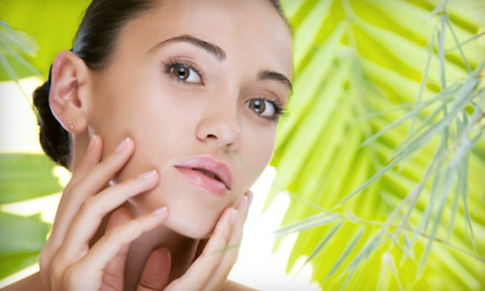 La Ritz Spa & Salon - Conyers: Two, Four, or Six Microdermabrasion Treatments at La Ritz Spa & Salon in Conyers (Up to 82% Off)