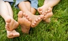Express Lawn Services - Coweta: $55 for Pallet of Bermuda Sod at Express Lawn Services in Coweta ($110 Value)
