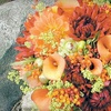 Up to 54% Off Flower-Design Services