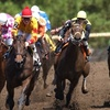 Up to 52% Off Horseracing Tickets at Canterbury Park