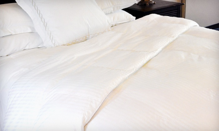Down Alternative Duvet Comforter: Down-Alternative Duvet Comforters in Size Twin, Full, Queen, Queen XL, King, or King XL (Up to 67% Off)