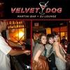 Half Off at Velvet Dog