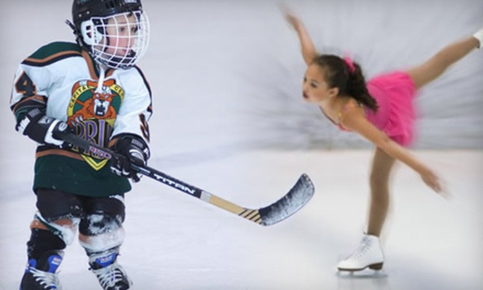 The Summit Sports and Ice Complex - Lansing : Ice-Skating Outing for Two or Ice-Skating Lessons at The Summit Sports and Ice Complex (Up to 55% Off)