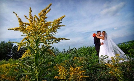 1 Trash the Dress Photography Package (a $170 value) - Chesler Photography in