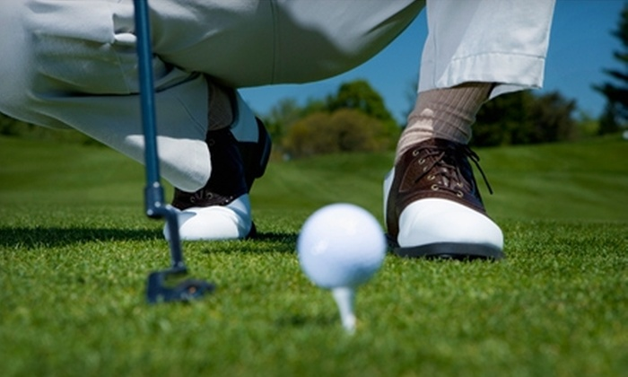World of Golf - Florence: $37 for a One-Hour Private Golf Lesson and Swing Analysis at World of Golf in Florence