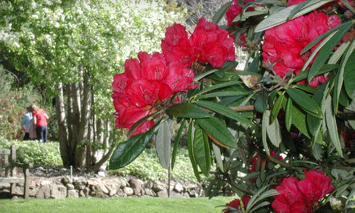 uc botanical garden: berkeley in Berkeley, California   Groupon