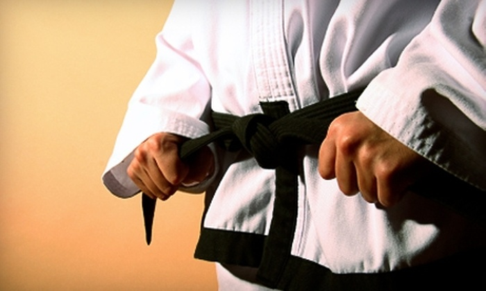 Team Chip Tae Kwon Do - Sayles Blvd. Area: $10 for One Week of Martial-Arts Classes at Team Chip Tae Kwon Do ($34.75 Value)