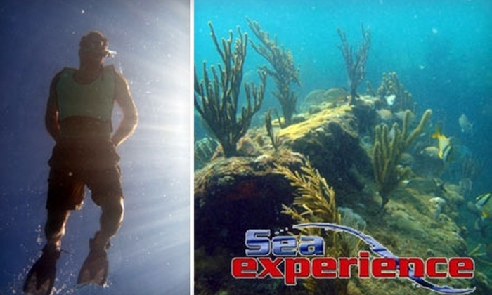 Sea Experience - Central Beach: $17 for One Adult Glass-Bottom Snorkel Trip from Sea Experience ($35 Value)