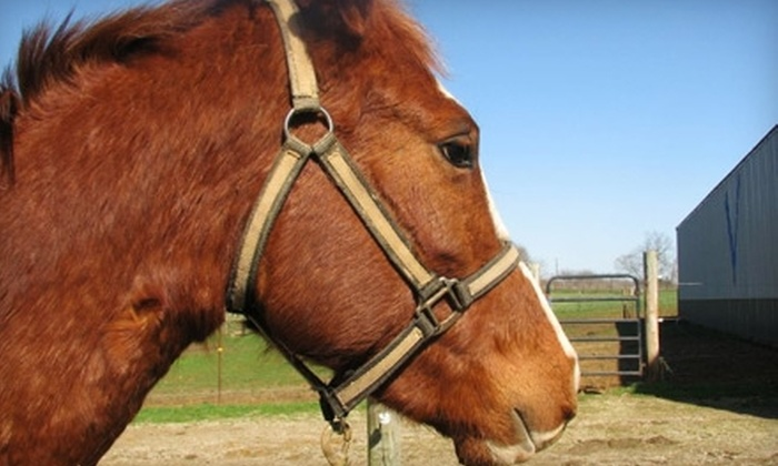 Hoof Beats Stable - Perry: $20 for a One-Hour Introductory Horseback-Riding Lesson at Hoof Beats Stable ($40 Value)