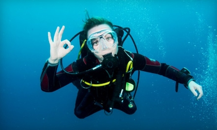 Freedom Scuba USA - Baldwinsville: $60 for Discover Scuba Course, Including an Open-Water Dive, at Freedom Scuba USA ($170 Value)