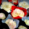 52% Off One Dozen Cupcakes in Durham