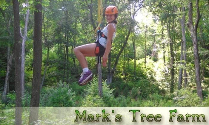 Mark's Tree Farm - Colchester: $20 for Four Zip-Line Rides at Mark's Tree Farm in Colchester ($46 Value)