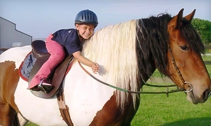 Glendale Stables, LLC - Columbia: $35 for Two 30-Minute Horseback-Riding Lessons at Glendale Stables, LLC ($70 Value)