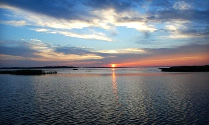 Botany Bay Ecotours - Edisto Beach: $20 for a Two-Hour Dolphin-Watching Tour from Botany Bay Ecotours ($40 Value)