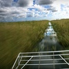 One-Hour Airboat Tour from Air Boat USA