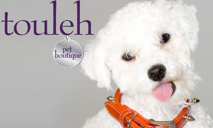 Touleh Pet Boutique - The Villas: $15 for $30 Worth of Designer Accessories and Treats at Touleh Pet Boutique