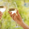 Half Off at Vino Del Grotto Winery in St. Augustine