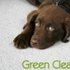 Up to 78% Off Carpet Cleaning