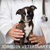 San Joaquin Veterinary Hospital - Bullard: $20 for a Veterinary Examination at San Joaquin Veterinary Hospital ($42 Value)