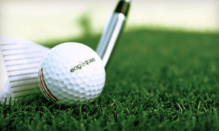 Eaglequest Golf Calgary - Northeast Calgary: One Hour of Unlimited Range Balls or 900-Minute Range Time Card at Eaglequest Golf (Up to 64% Off)