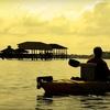 Half Off Ecological Kayak Tour