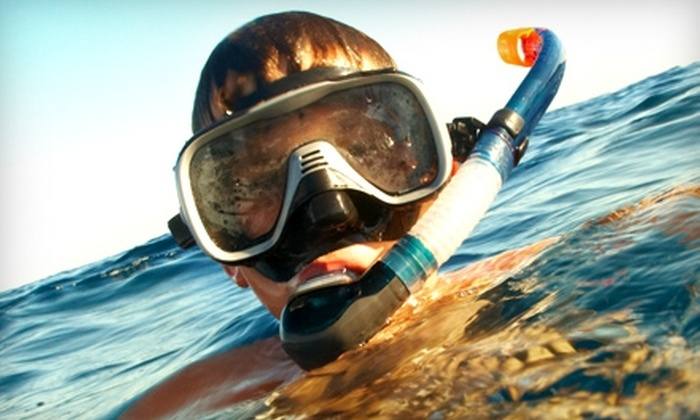 Sea Dwellers Dive Center of Key Largo - Upper Keys: $25 for a Half-Day Marine-Life Snorkeling Trip Plus Wet Suit Rental From Sea Dwellers Dive Center of Key Largo