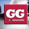 51% Off Gamecocks Fan Pack