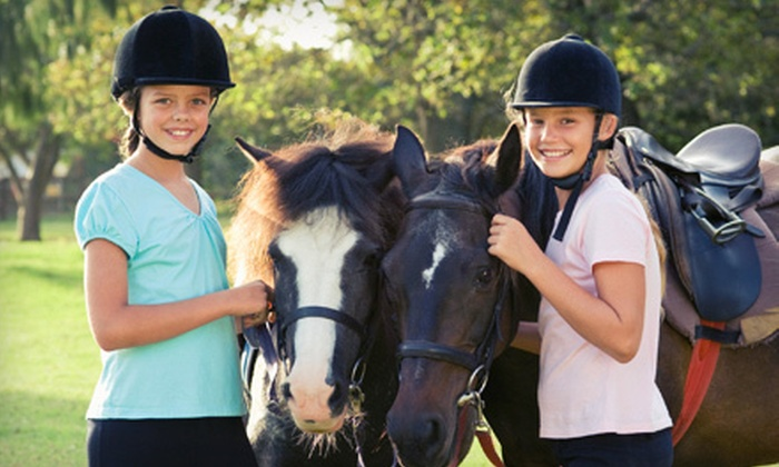 LFE Riding Institute - Southwest Ranches: $59 for a Four-Session Equitation Course at LFE Riding Institute in Southwest Ranches ($180 Value)