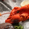 Half Off Fresh Seafood Packages from Harvest Delivery