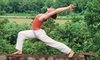 Yogaville - Buckingham: Half Off Weekend Yoga Retreat at Satchidananda Ashram – Yogaville in Buckingham. Three Options Available.