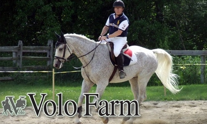 Volo Farm - Westford: $49 for a One-Hour Private Horseback Riding Lesson at Volo Farm in Westford