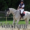 62% Off Horseback Riding in Westford