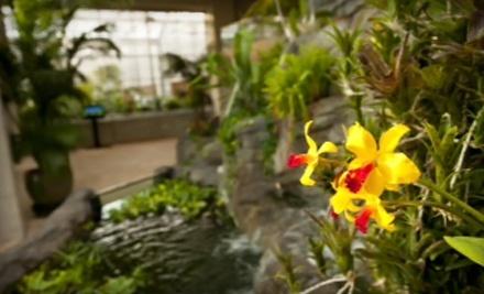 2 General-Admission Tickets (up to a $25 value) - Denver Botanic Gardens in Denver