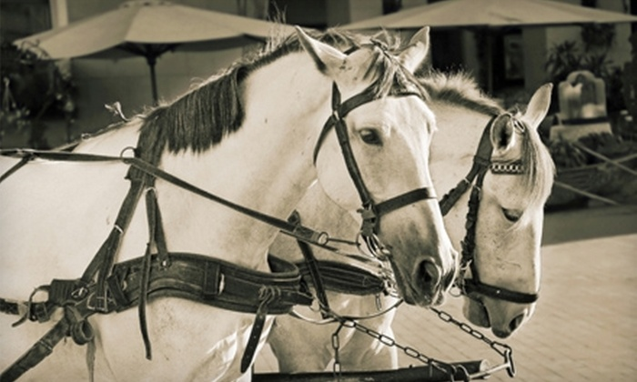 Kansas City Carriages - Country Club Plaza: $25 for a Private Victorian Carriage Ride for Two from Kansas City Carriages ($50 Value)