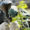 58% Off a Day of Paintball