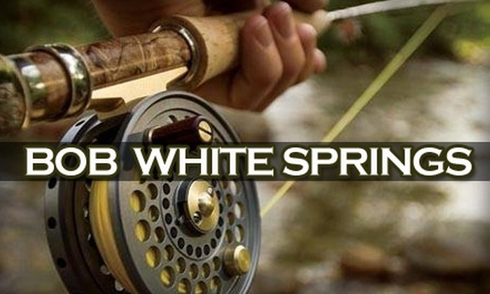 Bob White Springs - 1: $60 for Three Hours of Fly-Fishing Lessons from Bob White Springs (Up to $120 Value)