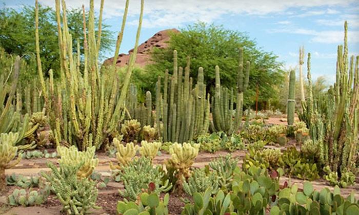Desert Botanical Garden - Camelback East: $9 for Visit to Desert Botanical Garden (Up to $18 Value)