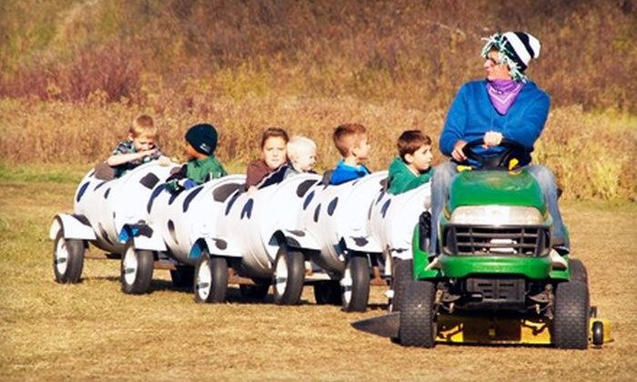 Pumpkin Hollow - Lumsden: $12 for One Season Pass to Family Farm and Fall Festival at Pumpkin Hollow ($25 Value)