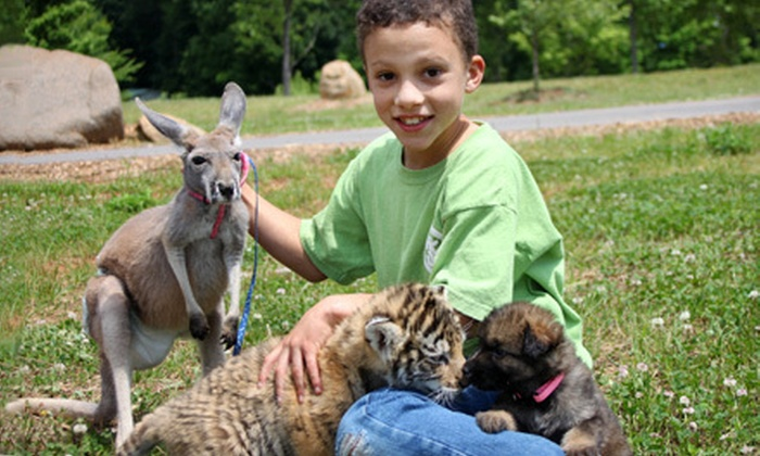 Zootastic Park - Barringer: Zoo Visit for Two or 30-Minute Safari Encounter for Up to Five at Zootastic Park in Troutman (Up to Half Off)