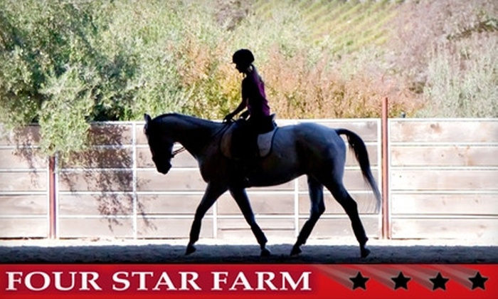 Four Star Farm - Multiple Locations: $32 for a Horse-Riding Lesson at Four Star Farm ($65 Value)