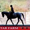 51% Off Riding Lesson at Four Star Farm